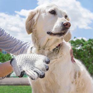 Rokavica-za-krtacenje-psa
