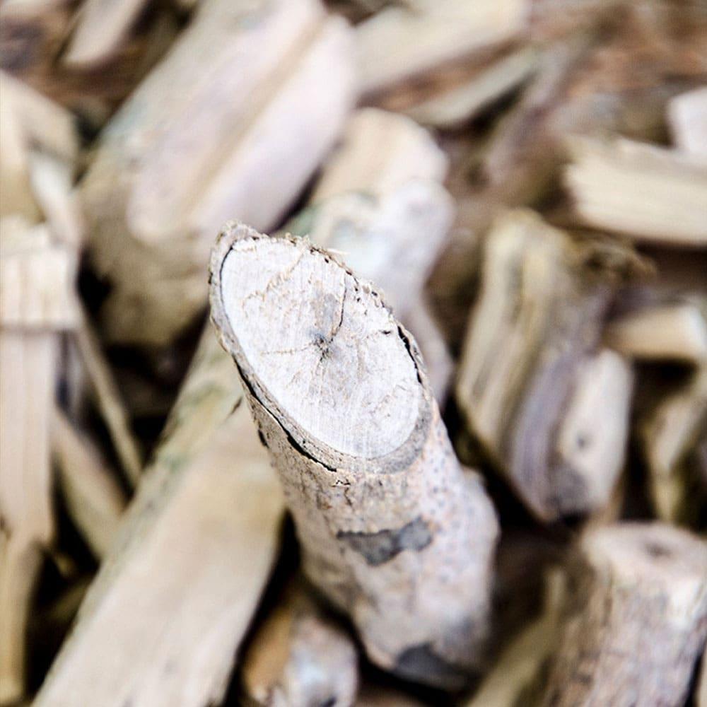 Posušen les muira puama